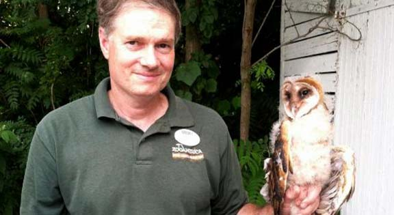 Tim with a barn owl chick