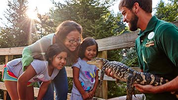 family enjoying an animal encounter with an alligator
