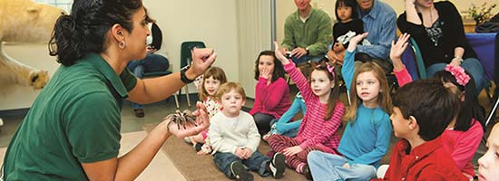 Animal Encounter in the classroom